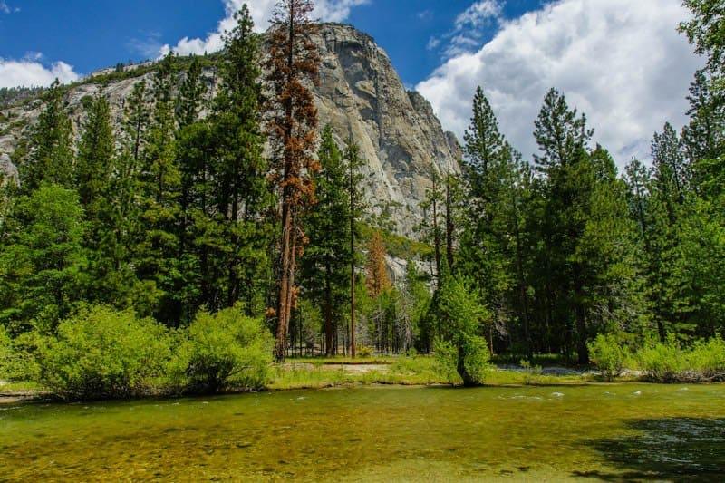 Inside California's National Parks
