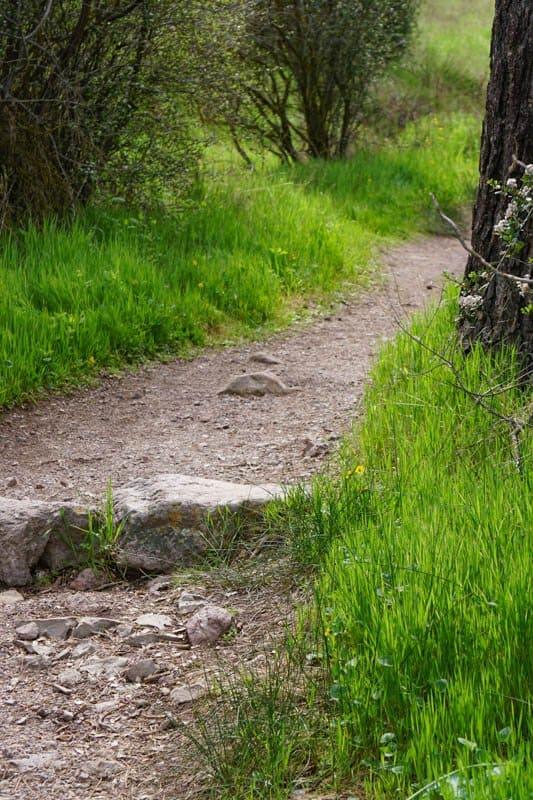 Trail at Pinnacles NP California