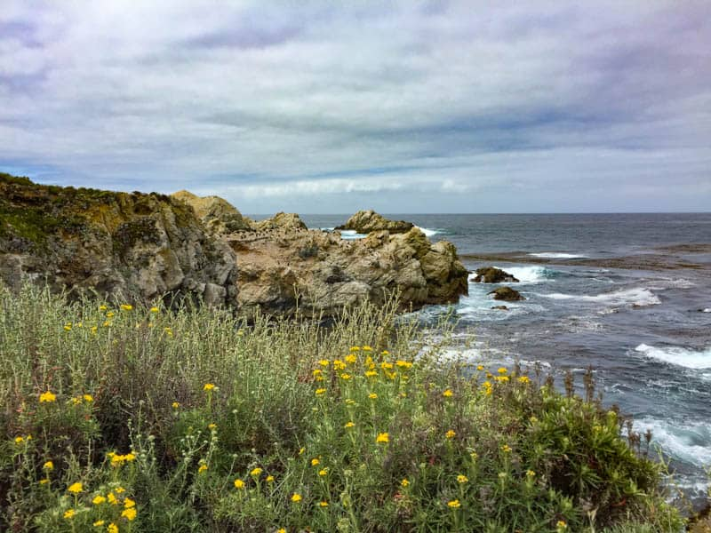 Beautiful view at Point Lobos State Natural Reserve