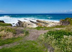 Hiking the Bluff Trail in Montana de Oro State Park
