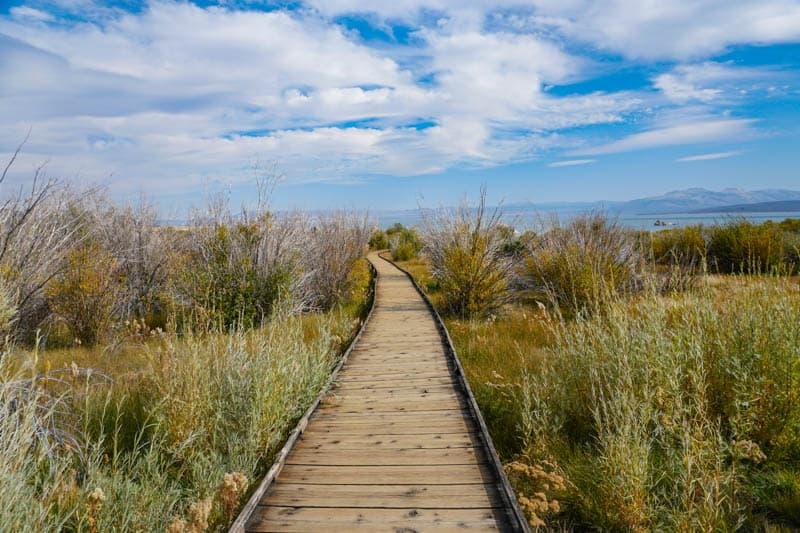 Boardwalk Trail Mono Lake Lee Vining California