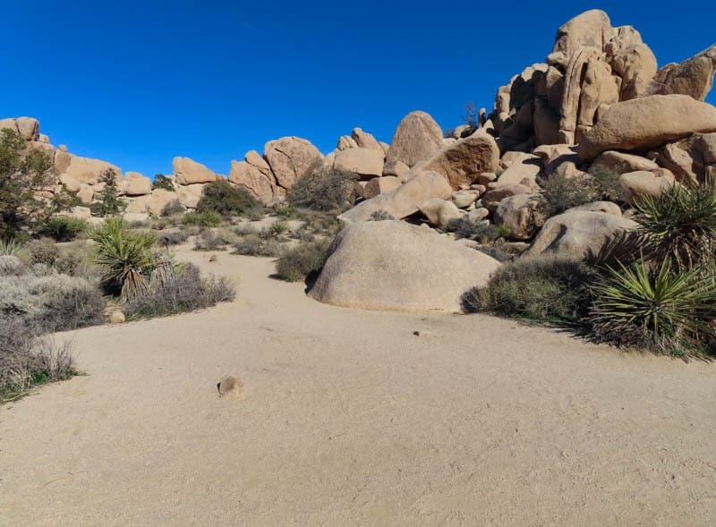 Hidden Valley Joshua Tree Desert Landscape