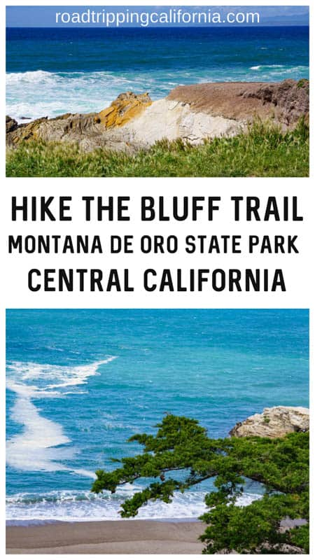 Visiting the central California coast? Check out the super scenic Bluff Trail hike at the Montana de Oro State park for beautiful views, sea and land birds, and wildflowers in season!