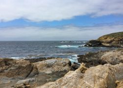 Point Lobos Hiking: Top 6 Trails to Hike at the California Coastal Park!