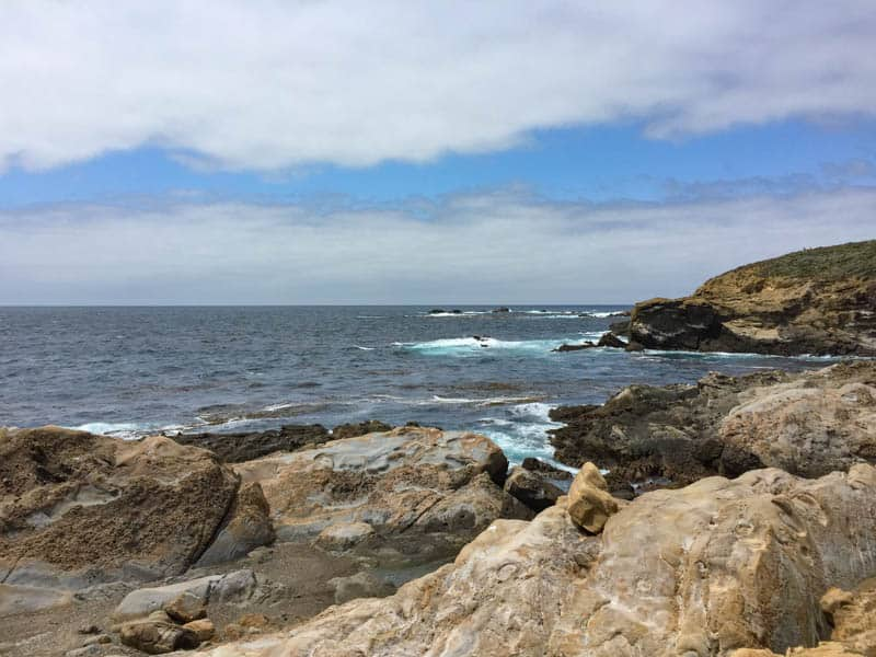 Hiking in Point Lobos State Natural Reserve Carmel California