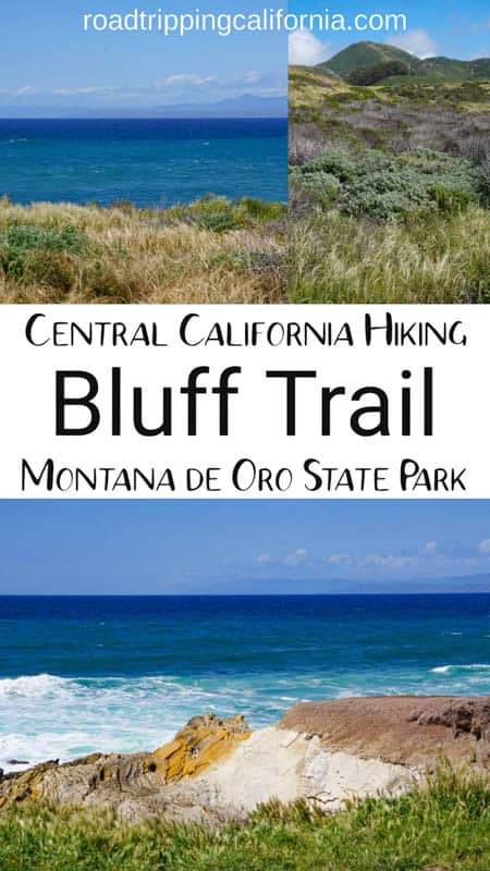 Hike the scenic Bluff Trail at the Montana de Oro State Park near San Luis Obispo. Beautiful views, photo ops, and wildlife!