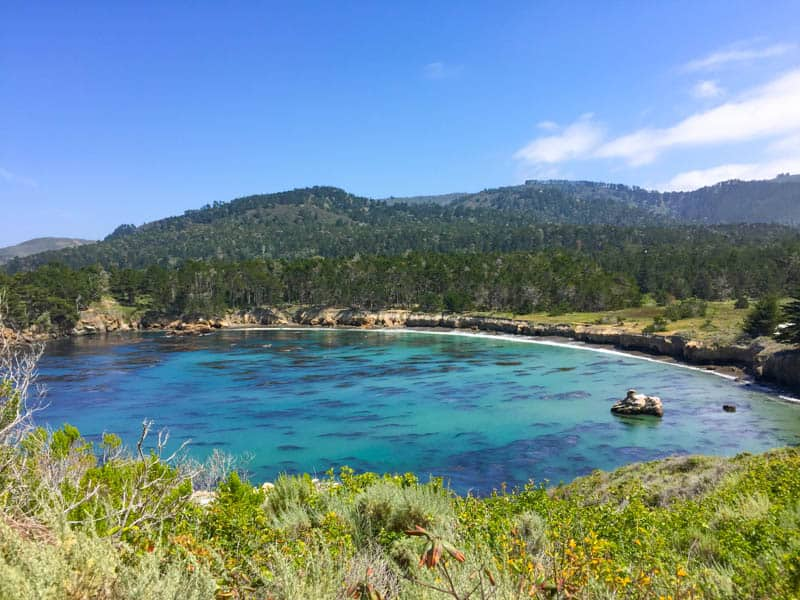 Point Lobos State park Northern Section Carmel California