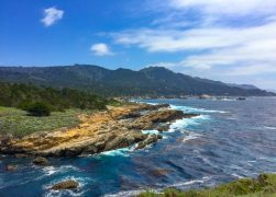 Point Lobos State Reserve, Carmel: Why You Should Visit (+ Tips)
