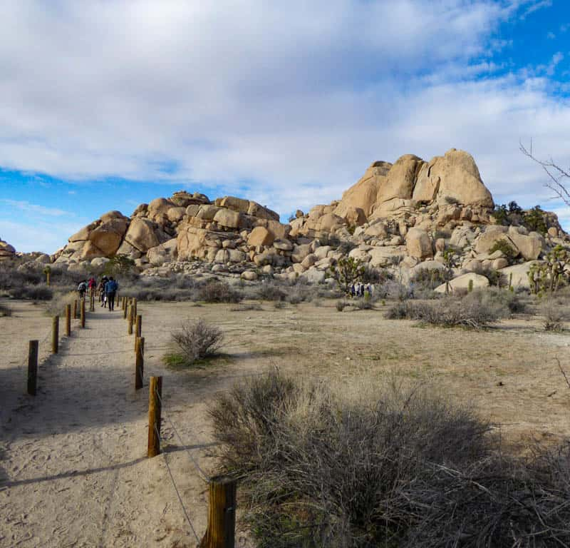 Roped pathway leading to Barker Dam Trail in Joshua Tree