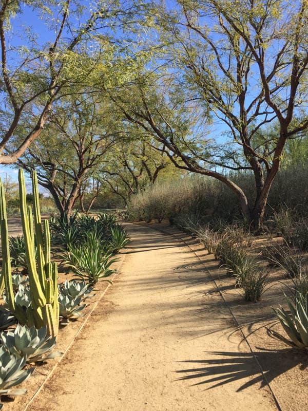 Sunnylands Desert Garden in Rancho Mirage California