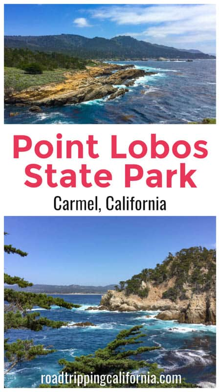 Discover the best things to do in Point Lobos State Reserve in Carmel California: the most scenic hiking trails, wildlife, birds, and views!