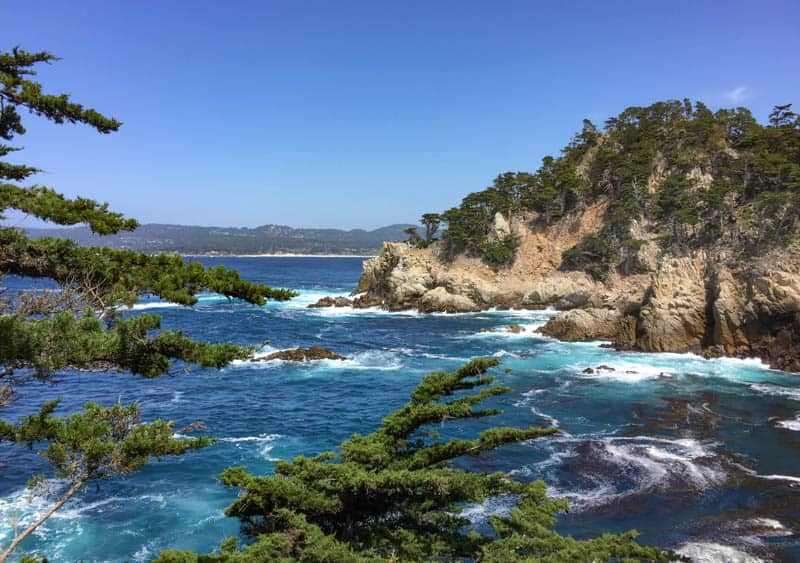 View from North Shore Trail Point Lobos State park
