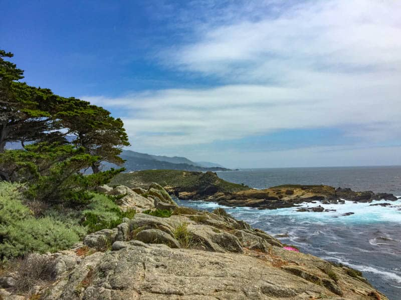 View at Point Lobos State Reserve in Central California