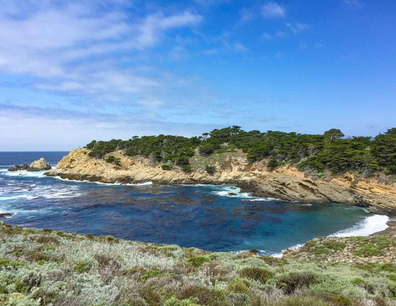 View from Trail in Point Lobos Carmel California