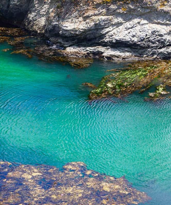 Waters of China Cove Point Lobos Carmel California