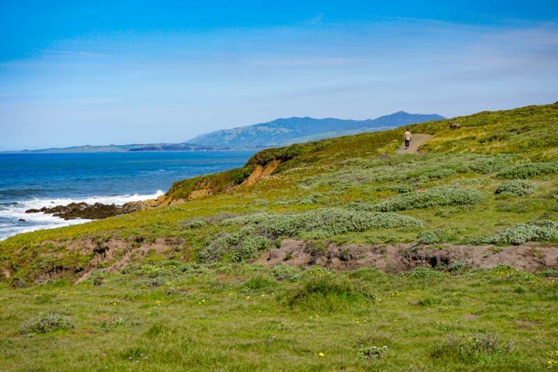 Bluff Trail Fiscalini Ranch Cambria California