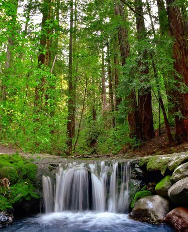 Bothe-Napa Valley State Park Saint Helena California