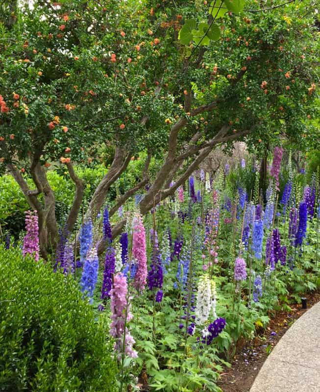 18 Beautiful Botanical Gardens In California You Have To Visit Roadtripping California