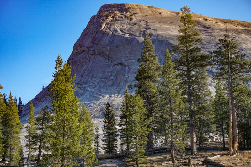 Lembert Dome Yosemite National Park California