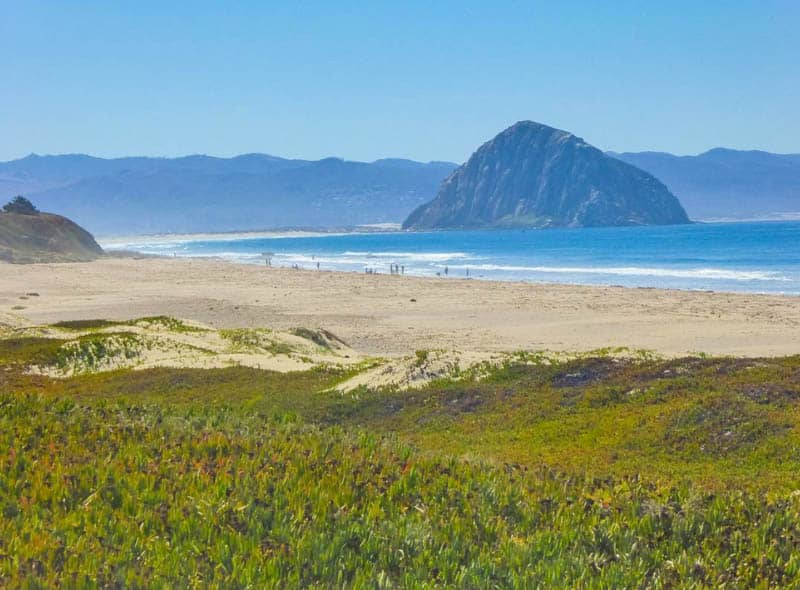 Morro Bay State Park Beach  California
