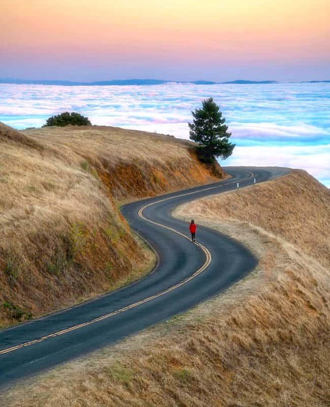 Mt. Tamalpais State Park California