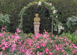 18 Beautiful Botanical Gardens in California You Have to Visit!