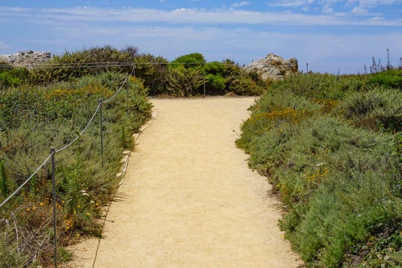 Bird Island Trail Point Lobos Carmel California
