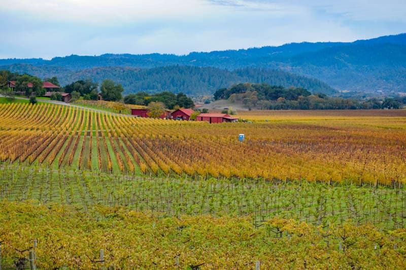 View from Silverado Trail Napa Valley California
