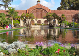 Balboa Park Gardens in San Diego: Why You Must Visit!
