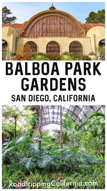 Discover why you should visit the beautiful Balboa Park Gardens in San Diego, California. Plus tips for visiting!