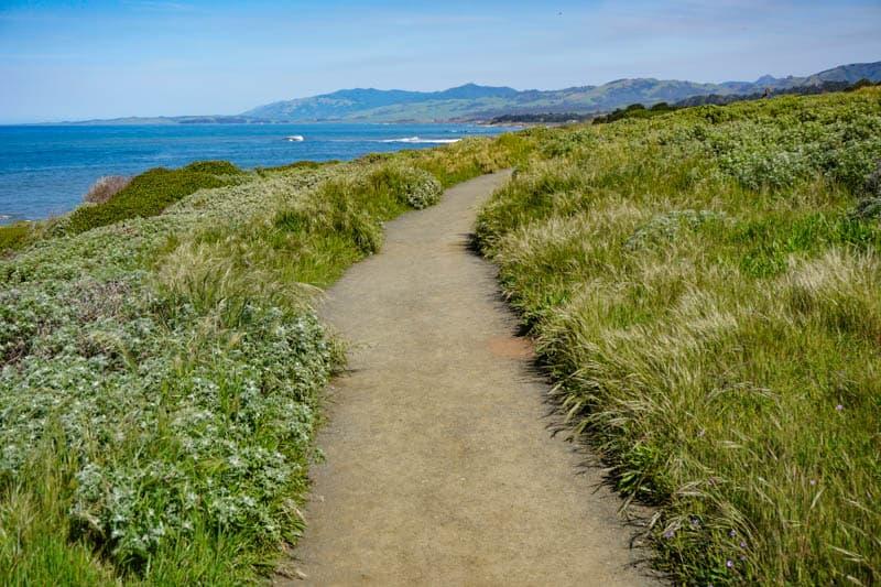 Bluff Trail at Fiscalini Ranch Preserve Cambria California
