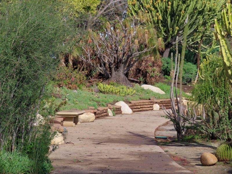 Desert Garden Balboa Park San Diego California