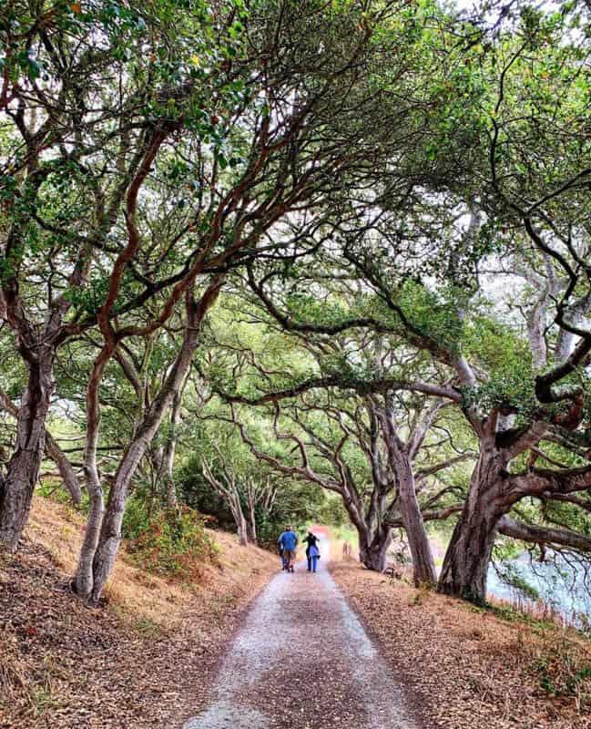 Elkhorn Slough National Estuarine Reserve Moss Landing California