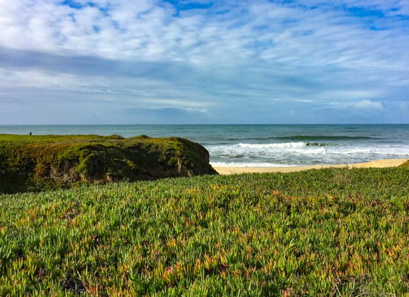 Half Moon Bay State Beach California is one of the best day trips from San Francisco you can do!