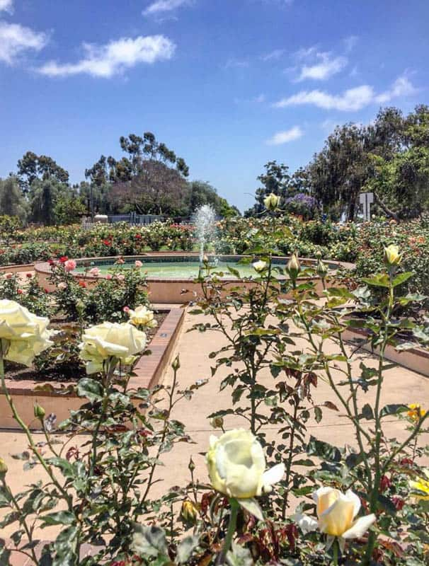 Inez Grant Parker Memorial Rose Garden Balboa Park San Diego