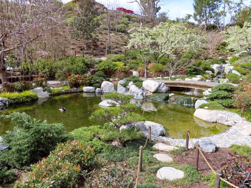Japanese Garden San Diego California