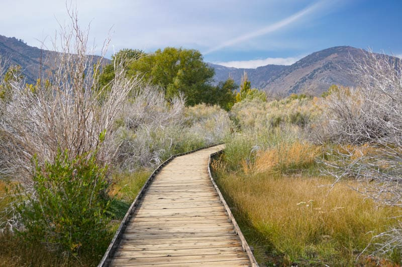 Mono Lake Boardwalk Trail Lee Vining California