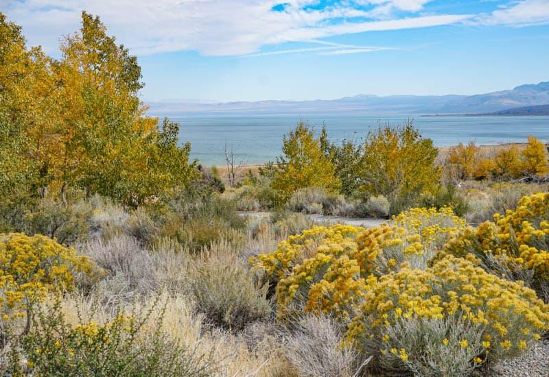 Mono Lake Eastern Sierra California