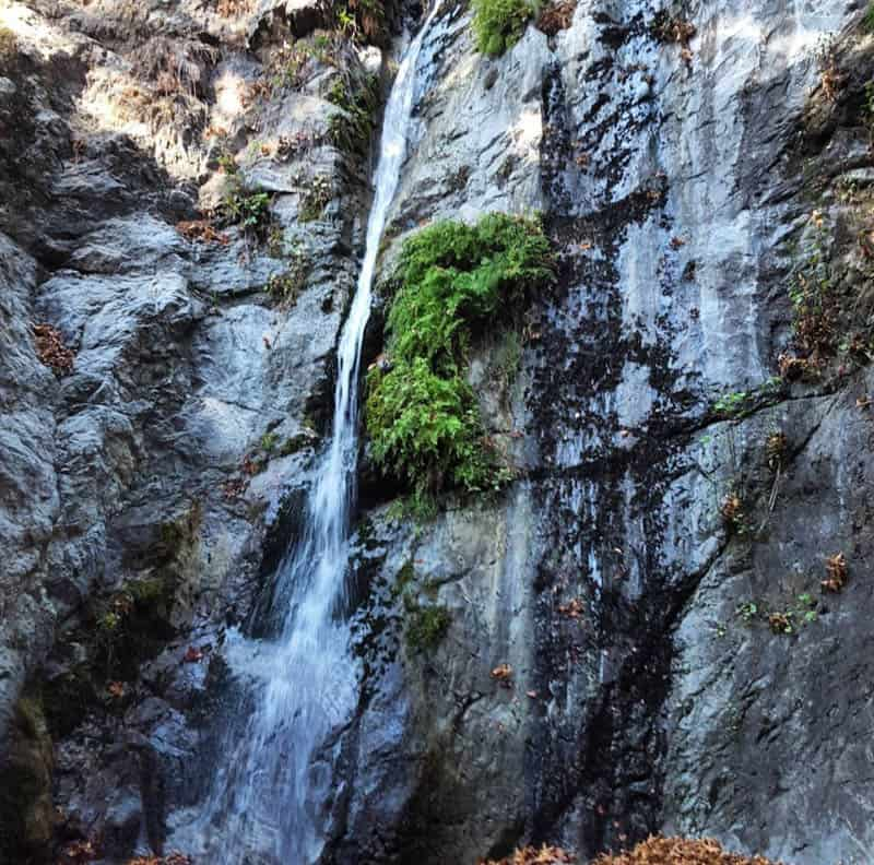 Pfeiffer Falls Big Sur California