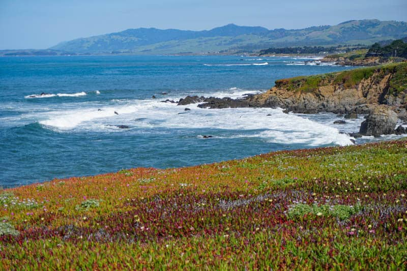 Things to Do in Cambria California