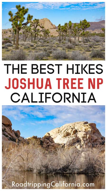 Discover the best hikes in Joshua Tree National Park, California, from easy Hidden Valley to challenging Warren Peak!