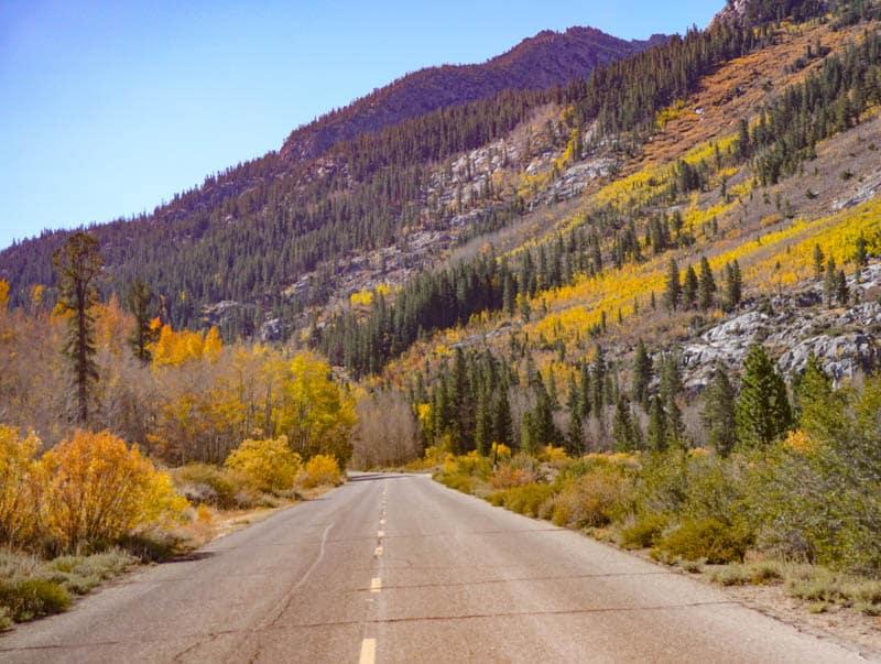 Road in the Eastern Sierra California
