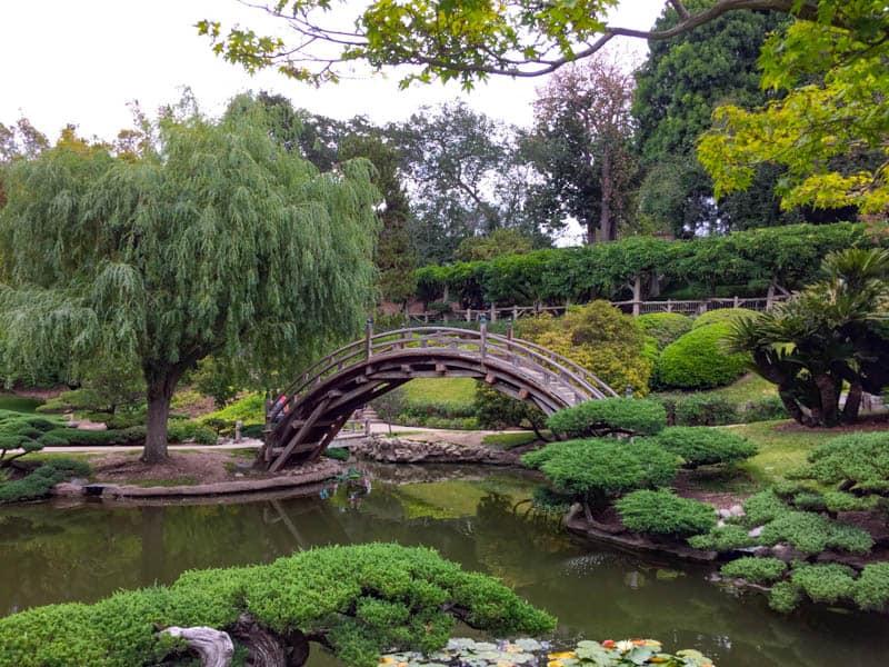 Japanese Garden The Huntington near Pasadena California