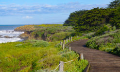 Moonstone Beach Boardwalk in Cambria: A Must-Walk Scenic Trail!