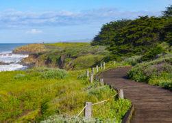 Moonstone Beach Boardwalk in Cambria: A Must-Walk Scenic Trail!