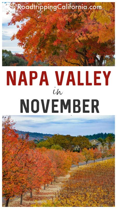 The Ultimate Guide to Napa Valley in November: things to do, where to stay, where to eat, and what to wear!