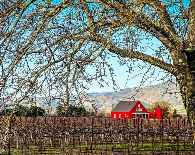 Napa Valley California in Winter