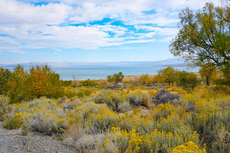 A view of Mono Lake in the Eastern Sierra of California