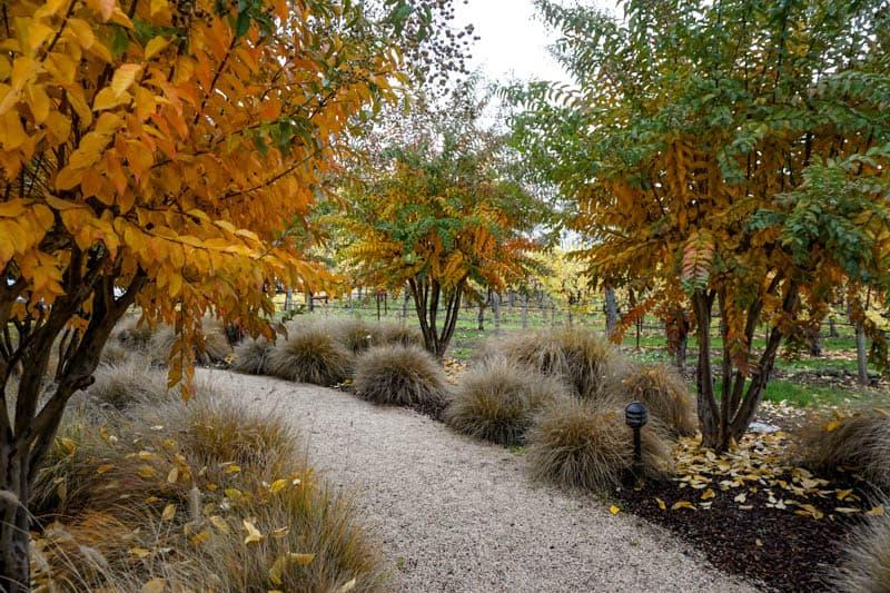 Grounds of Duckhorn Vineyards in Napa Valley California
