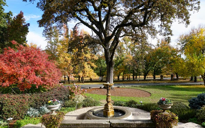 Beringer Vineyards is one of Napa valley's most beautiful wineries!